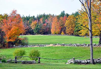 Fall Foliage 6 Poster