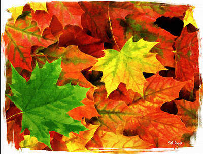 Fall Foliage Poster by Bob Sandler
