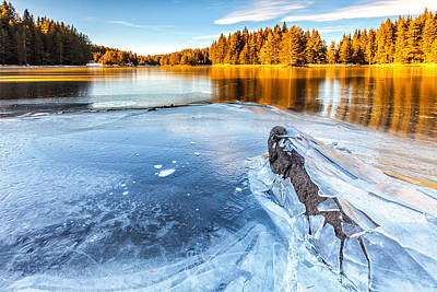 Fall Gives Way To Winter Poster by Evgeni Dinev