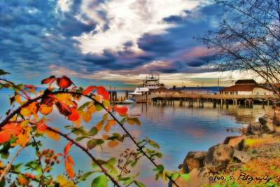 Fall In Steilacoom Poster