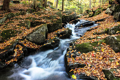 Fall In The Adirondacks Poster