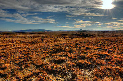 Fall In The High Desert Poster
