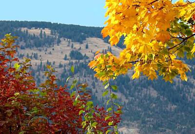 Fall In The Okanagan Valley Poster by Will Borden