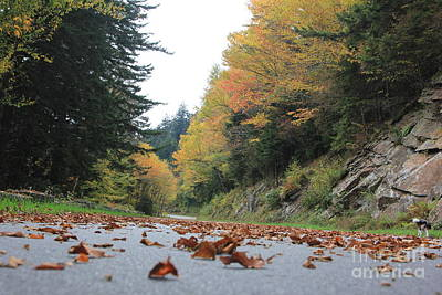 Fall In The Smokies Poster