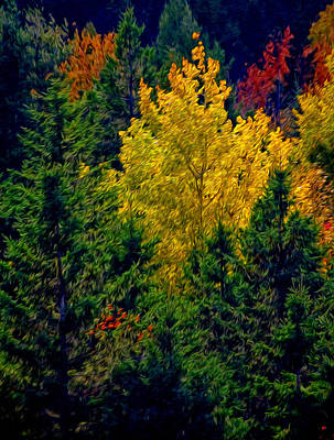 Poster featuring the photograph Fall Leaves by Bill Howard
