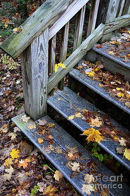 Fall Leaves On Steps Poster by Birgit Tyrrell