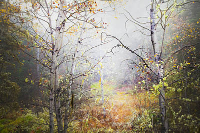 Fall Mist Poster by Theresa Tahara