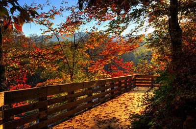 Fall Morning Walk Poster