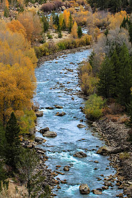 Fall On The Gros Ventre River Poster
