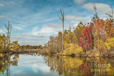 Poster featuring the photograph Fall Pond by Debbie Green