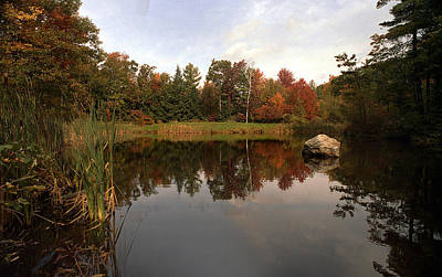 Fall Pond Poster by Skip Willits