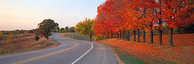 Fall Road Il Poster by Panoramic Images