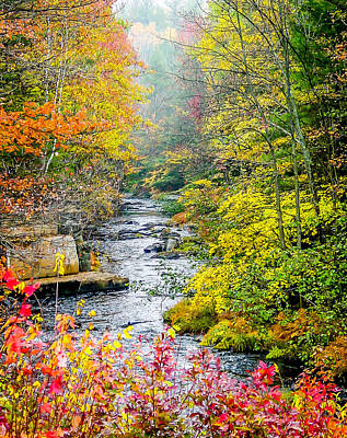 Fall Stream In New Hampshire Poster