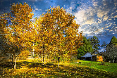 Fall Trees At The Farm Poster by Debra and Dave Vanderlaan