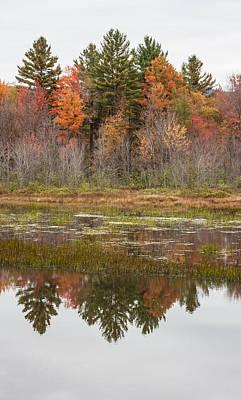 Fall Trees Reflected In Lake Chocorua Poster by Karen Stephenson