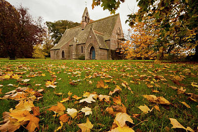 Fallen Leaves On The Grass In Front Poster by John Short
