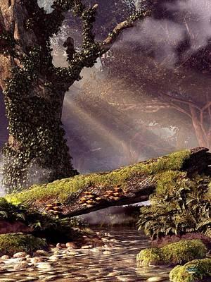 Fallen Tree Bridge Poster by Daniel Eskridge
