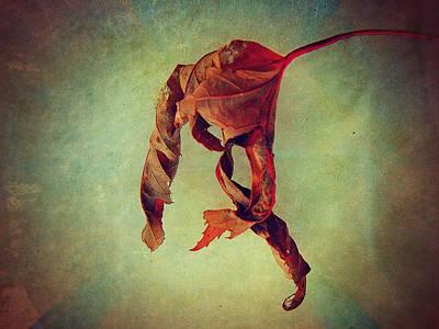 Falling Falling Poster