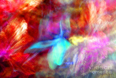 Falling Petal Abstract Red Magenta And Blue B Poster