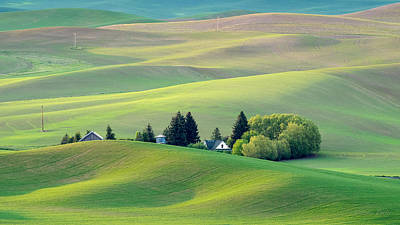 Farm Buildings Nestled In The Palouse Country Poster