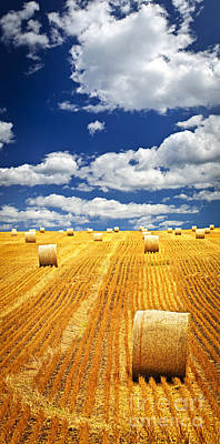 Farm Field With Hay Bales In Saskatchewan Poster