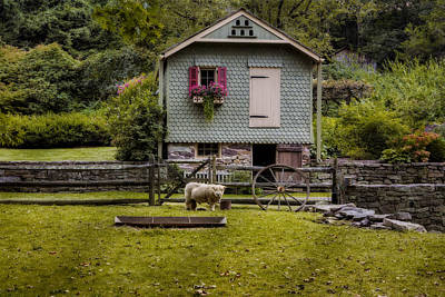 Farm House And Babydoll Sheep Poster by Susan Candelario