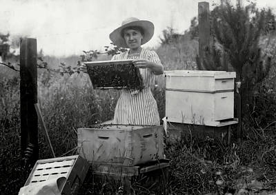 Farm Wife Beekeeper 19th Century Poster