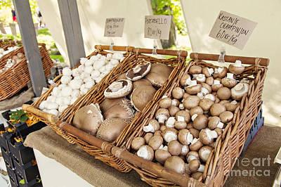 Farmers Market Mushrooms Poster