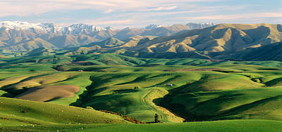 Farmland S Canterbury New Zealand Poster by Panoramic Images