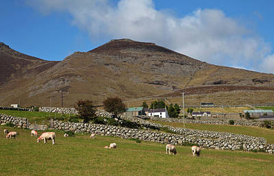 Farmland, Stone Walls In The Midste Poster
