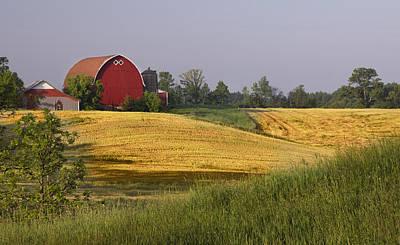 Farmlands 1 Poster by Barbara Smith
