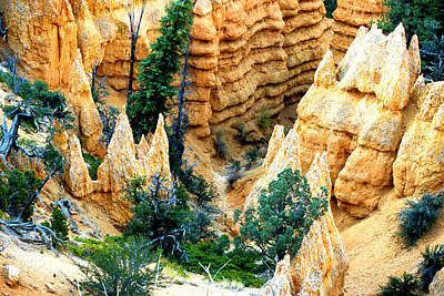 Faryland Canyon Bryce Canyon National Monument Poster