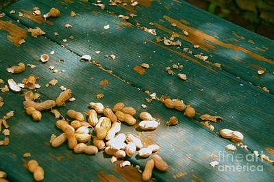 Feeding The Squirrels  Poster by JW Hanley