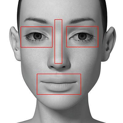 Female Head With Biometric Markers Poster by Alfred Pasieka