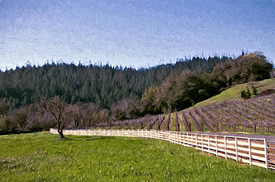 Fence Curves Poster