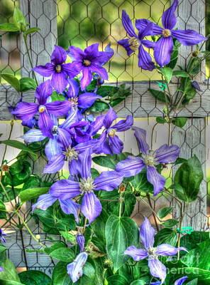 Fence Flowers Poster by Myrna Bradshaw