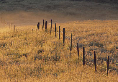 Fence In Pasture Near Cochrane Poster by Darwin Wiggett