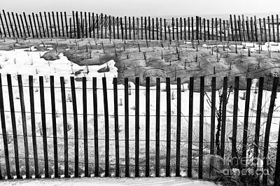 Fence Lines Mono Poster