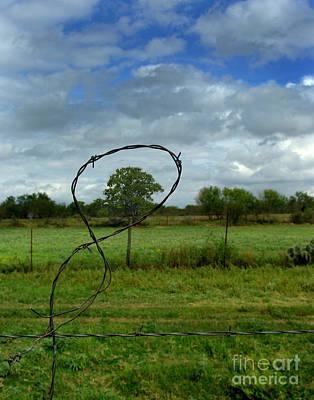 Fenced In Poster by Peter Piatt