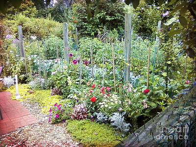 Fenway Victory Garden 1 Poster by Shelly Weingart
