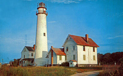 Fenwick Island Lighthouse 1950 Poster by Skip Willits