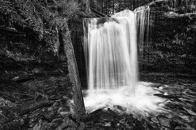 Fern Falls Black And White Poster by Mark Kiver
