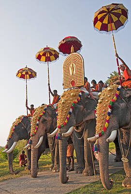Poster featuring the photograph Kerala Festival Elephants by Dennis Cox WorldViews