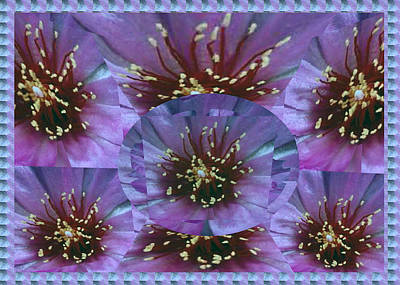 Festival Of Lights And Celebrations Created Out Of Flower Petal Pistil Anther Stigma Filament Style  Poster
