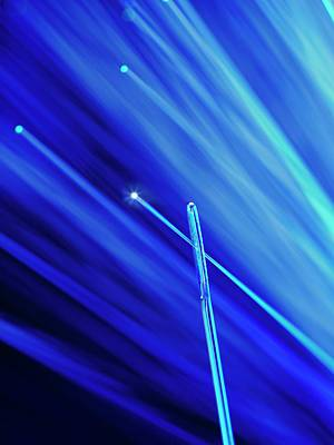 Fibre Optic And Needle Poster by Science Photo Library