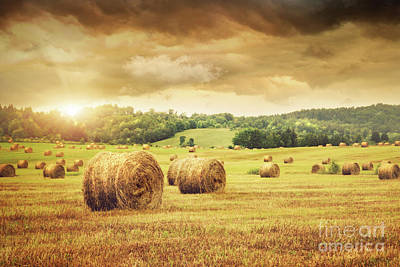 Field Of Freshly Bales Of Hay With Beautiful Sunset Poster