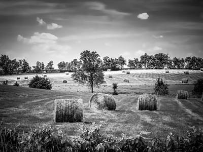 Field Of Hay In Black And White Poster