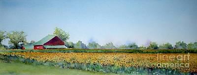 Field Of Sunshine Poster