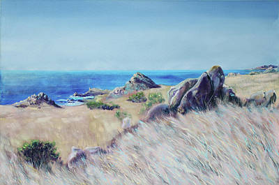 Fields With Rocks And Sea Poster by Asha Carolyn Young