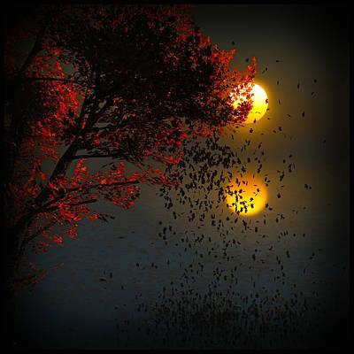Fiery Fall... Poster by Tim Fillingim
